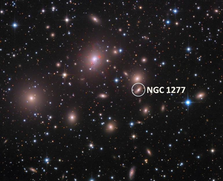 ngc-1277-label