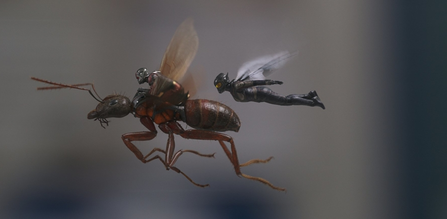 Ant-Man-et-la-Guêpe-e1530473865333-906x445.jpg