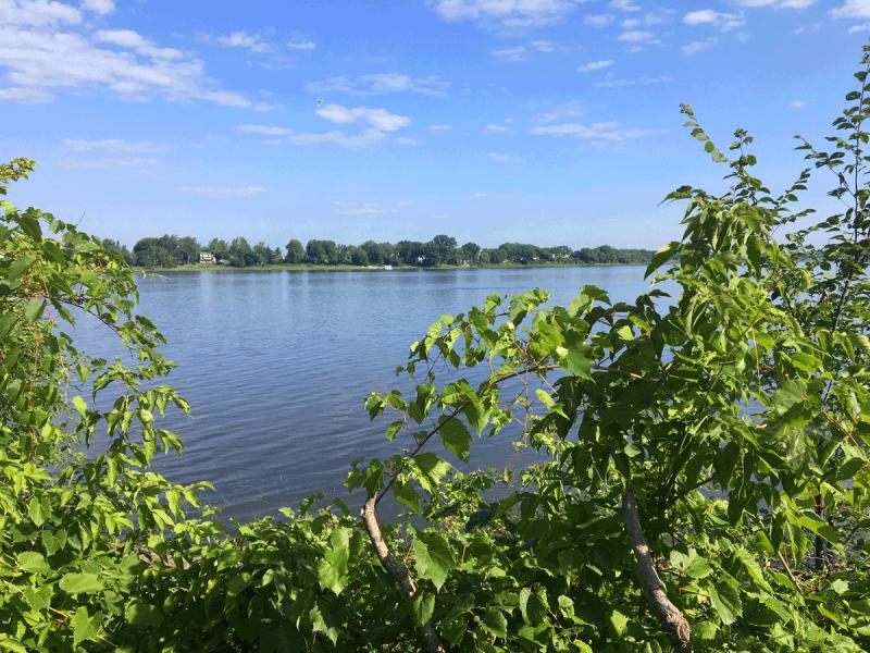 Riviere-Des-Prairies.png