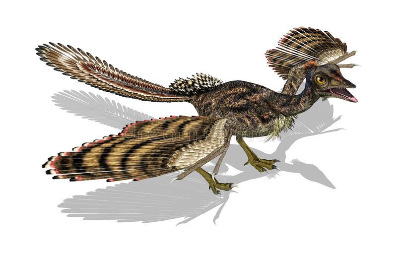 птица-archaeopteryx-доисторическая-25156158