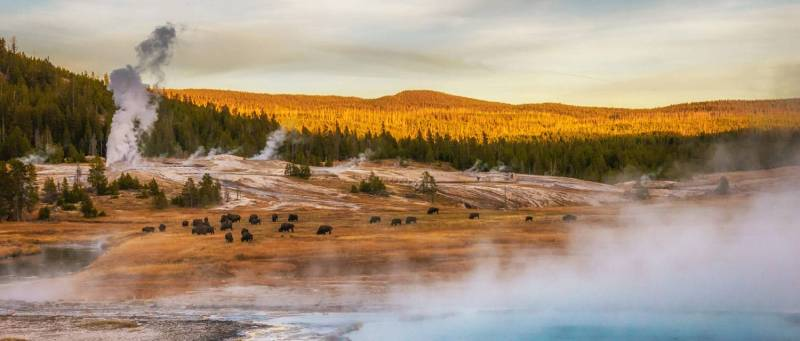 yellowstonevacations-home-fall-geyser-basin-desktop