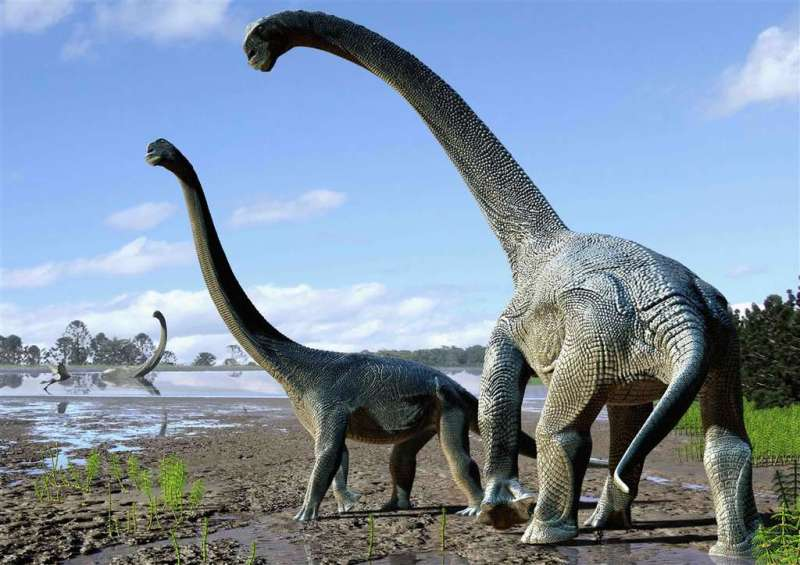 dinosaure-herbivore-long-cou_1