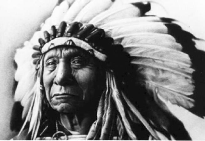 livre-moi-sitting-bull-chef-de-tribu-des-lakotas-m